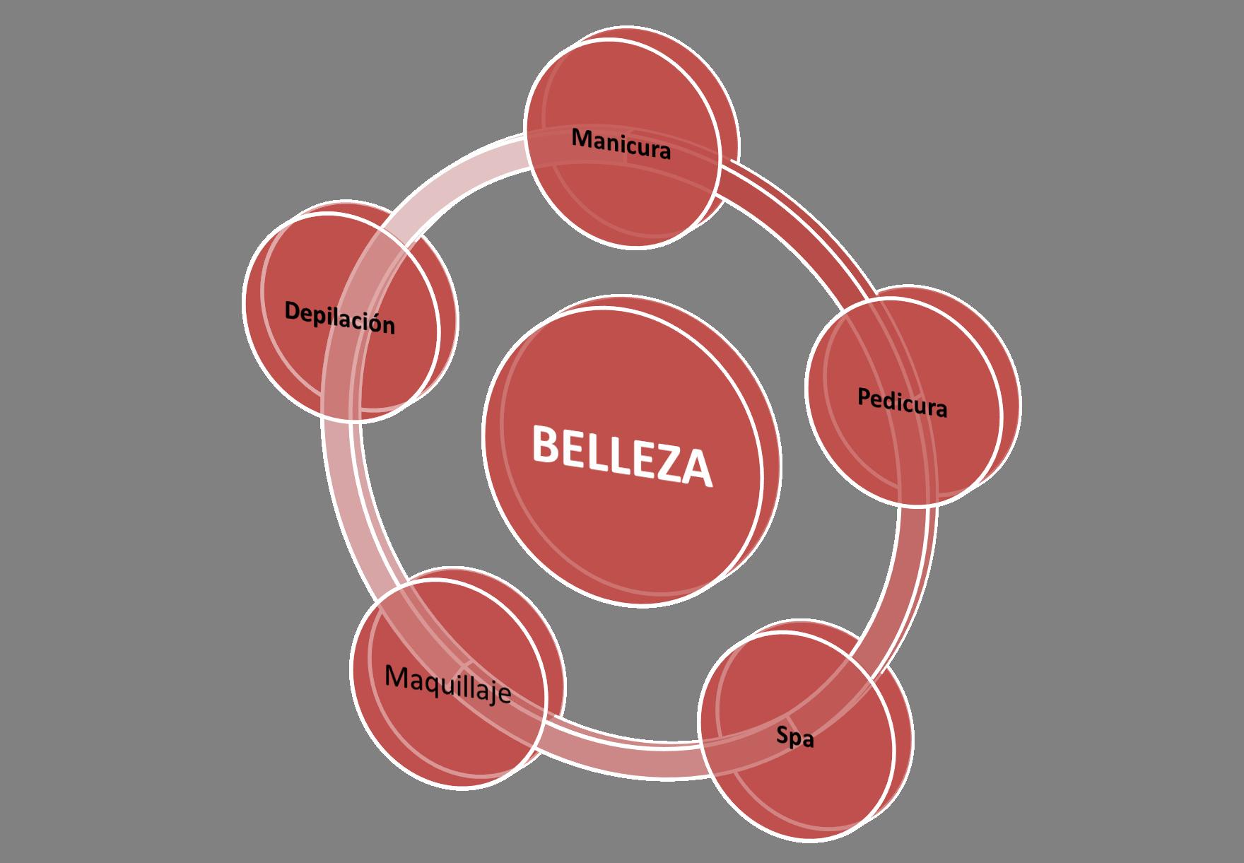 DIAGRAMA SERVICIOS BELLEZA